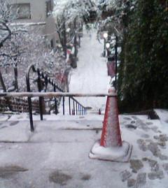 土曜の雪のなか